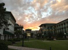 FGCU, Fort Myers, FL